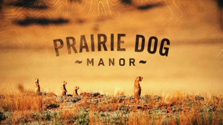 Поместье луговой собачки 01 серия. Однажды в Нью-Мексико / Prairie Dog Manor (2019)