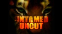 Дикие и Опасные: 36 серия. Медведь в ловушке / Untamed and Uncut (2010)