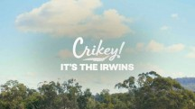 Зоопарк Ирвинов 1 серия / Crikey! It's the Irwins (2019)