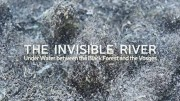 Незримая река между Шварвальдом и Вогезами / The Invisible River - Under Water between the Black Forest and the Vosges (2019)